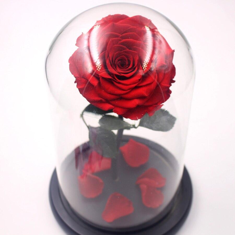 ac6f3502b0f Tamanho grande Tampa De Vidro Fresco Preservado Rose Red Flor Imortal Rosas  Coloridas para a Menina Presente de Casamento Dia Dos Namorados em    Artificial ...