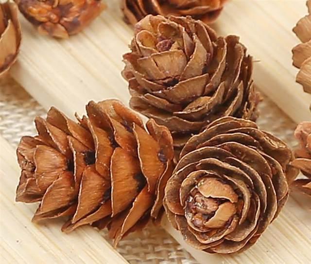 20PCS Wooden Natural Pinecone Christmas Tree Hanging DIY 3D Vivid Pine Cones Ornaments Party Christmas Decor Home Decors 15