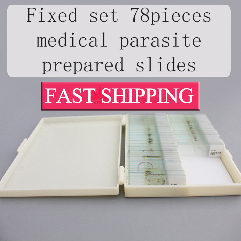 Fixed set Teaching Resources University students study 78pieces medical parasite prepared microscope slides high quantity microscope embryology prepared slides