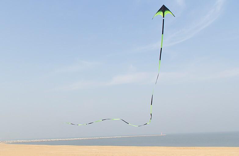 tails with10m kite Kites 3
