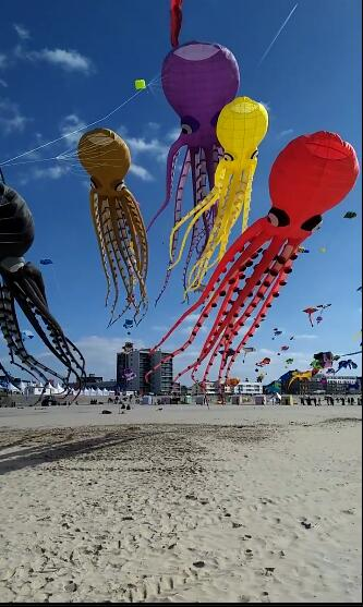 Custom Made High Quality 35m  Octopus Kite managing projects made simple