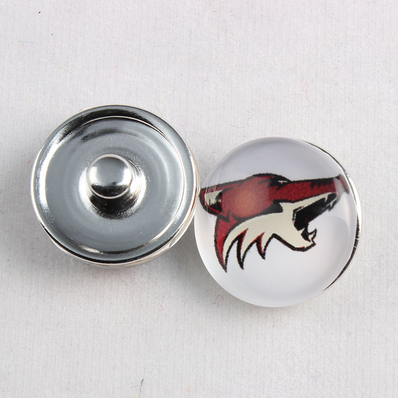 10pcs Ice Hockey Arizona Coyotes Log NHL Snap Button Charm 18MM Glass Ginger Snap Button Fit Snap Button Jewelery For Sport Fans