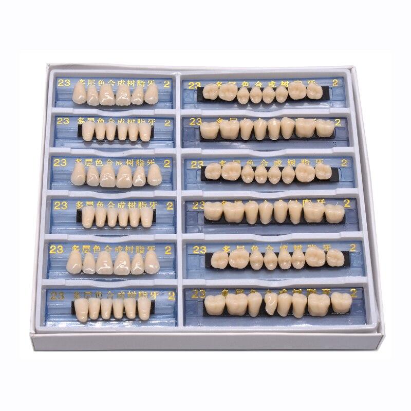 2 schicht 168/84 stücke Acryl Harz Prothese Dental Zähne Oberen Unteren Schatten 23 A2 Oral Pflege Aufhellung Zahn Modell Dental materialien