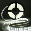 New Arrival 5M 600 LEDs Double Row 5050 SMD Cool/Warm White Light Strip Tube Car Wall Lamp Waterproof 12V