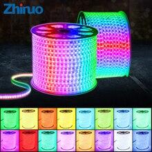 110V LED şerit SMD5050 60led/m renk değiştirme uzaktan kumanda tipi RGB Neon ışık kemer AC110V aydınlatma hattı ev dekor su geçirmez