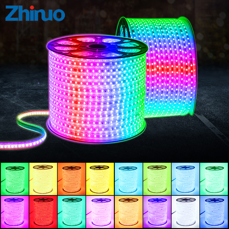 ZHINUO 110V LED Strip SMD5050 Color Changing Remote Control Type RGB Neon Light Belt AC110V Lighting Line Home Decor Waterproof