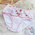Crianças meninas underwear crianças calcinhas das meninas da forma do bebê crianças calcinhas das meninas calcinhas de algodão floral 6 pçs/lote