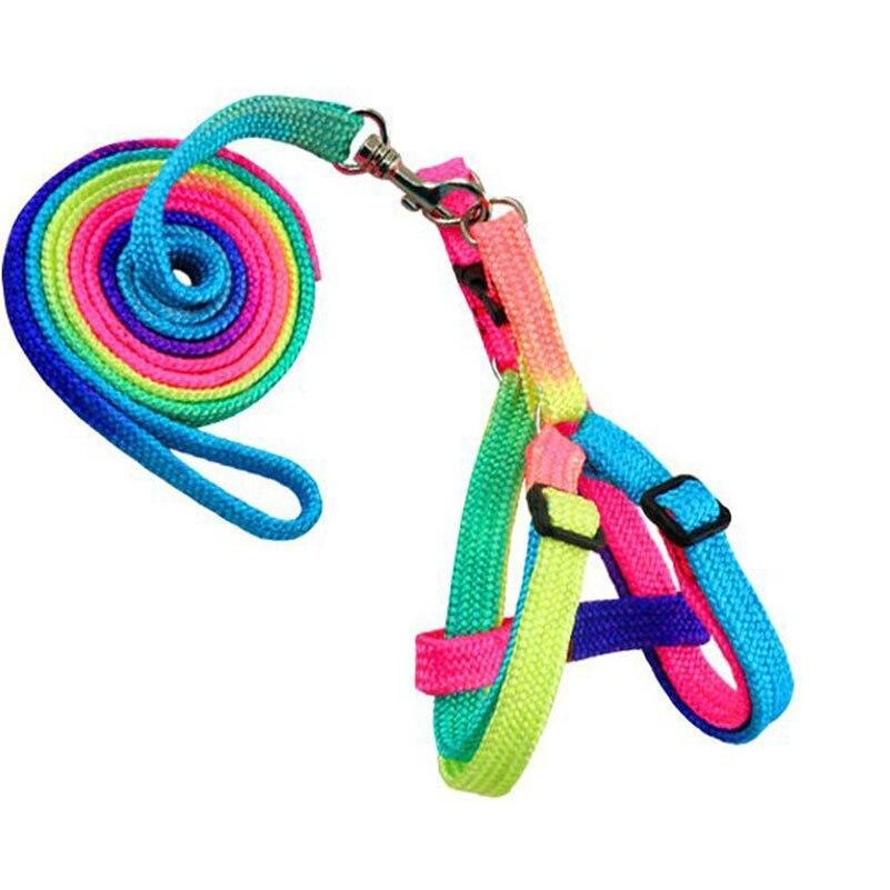 Adjustable Cat Leash + Pet Harnesses Rainbow Pet Dog Leash Small Puppy Harness Rabbit Kitten Nylon Leash Harness Collar Lead
