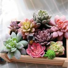 Искусственные суккуленты, искусственные растения, алоэ, кактус, пейзаж, цветок лотоса, сделай сам, искусственный цветок, Креативные аксессуары для творчества