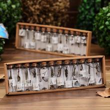 12 шт./упак. креативный подарок, мини юбка-пачка Стекло пробка бутылки желаний Флаконы Контейнеры маленькая Винтаж крафт украшение дома Декор