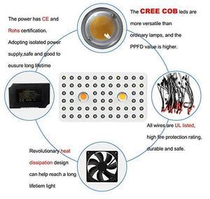 Image 3 - Phlizon 1000 Вт COB светодиодный светильник для выращивания растений с полным спектром УФ ИК комнатный завод теплицы гидропоники цветок Вег с сертификатами двойной чип