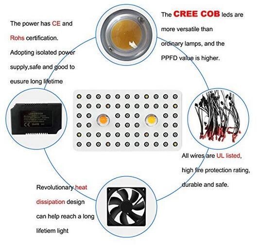 Image 3 - Phlizon 1000w COB Led Grow Light Full Spectrum UV IR Indoor Plant Greenhouse Hydroponic Veg Flower with certifications Dual Chip-in Growing Lamps from Lights & Lighting