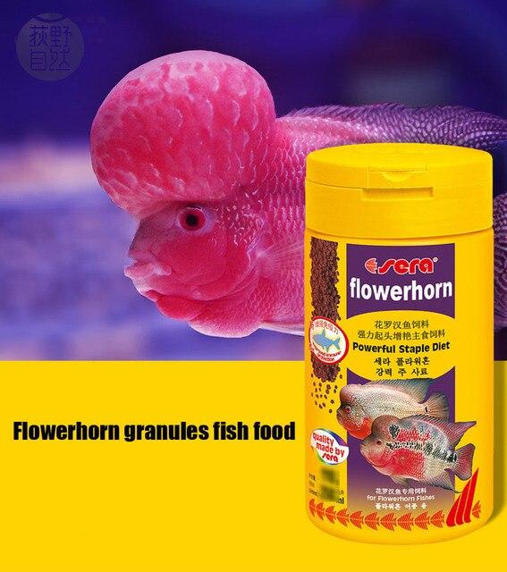Cibo per pesci d 39 acquario flowerhorn granuli potente for Cibo per pesci tropicali