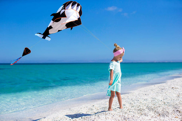 New Arrive  Outdoor fun Sports Single Line Software Whale/ Dolphin Kite / Animal  Kites With Handle and 100m Line Good Flying  1