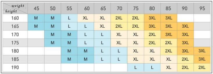 Calções de Corrida Esportes Ginásio Exercício Calções