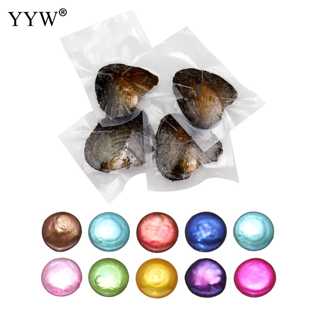 YYW One Oyster with One Pearl Freshwater Love Wish Pearl Oyster Dyed Colorful 10-11mm Button Beaded Mussel Shell Oysters Pearls