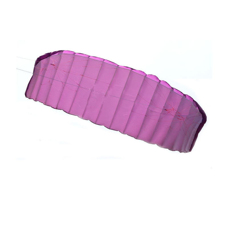 New High Quality 5 square meters Quad Line Parafoil Kite With Flying Tools Power Braid Sailing