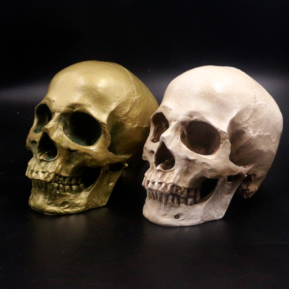 Human Skull Lifesize 1: 1 Resin Replica Medical Model Aquarium Ornament Fish Tank Waterscape Cave Halloween Home Decoration