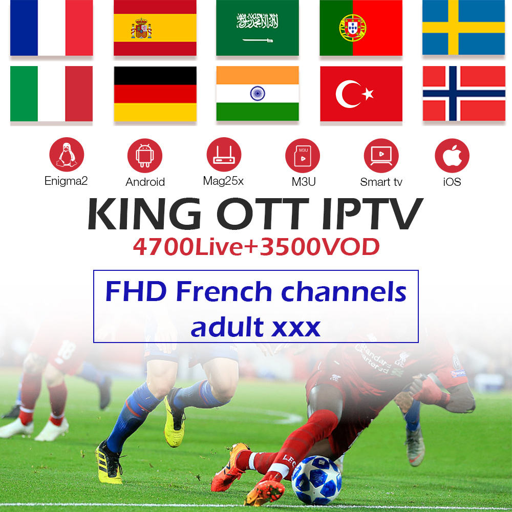 King OTT IPTV subscription Europe IPTV French Spain Arabic UK Nordic Sweden Portugal IPTV M3U for android tv box smart tv box PC standard schnauzer