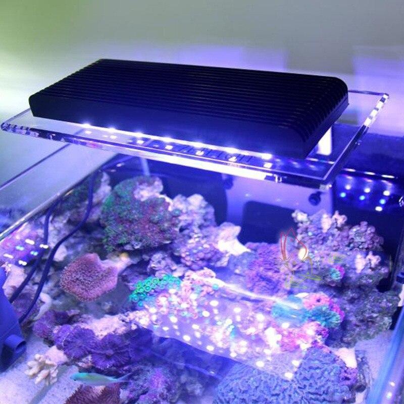 Lumière d'agrafe de LPS de corail de lumière LED marin pour la lampe à LED intelligente de Wifi de réservoir de récif de mer d'aquarium