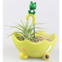 Kawaii Cartoon Cartoon Chinchilla Black Cat Umbrella Design Flower Pot Succulent Planter Little Prince Cat Frog