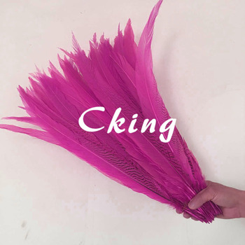 Free shipping 50pcs/lot Hot Pink Dye Pheasant Silver Feather performance Plume 60-65cm pheasant tails Feather for backpieces