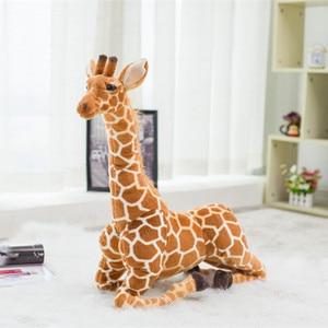 Image 5 - Enorme vita reale giraffa giocattoli di peluche bambole di peluche carine simulazione morbida giraffa bambola regalo di compleanno giocattolo per bambini arredamento camera da letto
