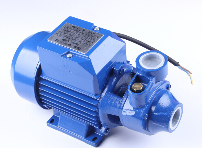 QB60 Electric Clean Water Pump Working On 220 volts or 110 volts