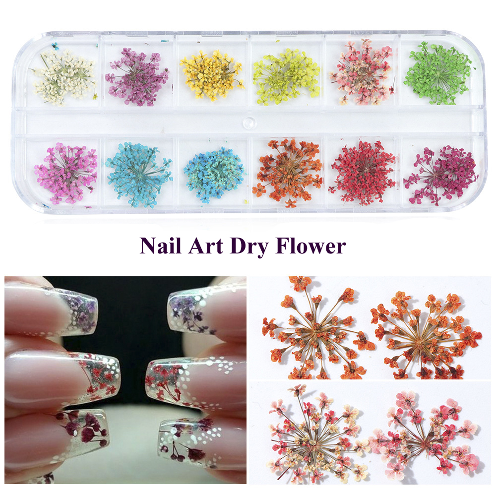 12 Patterns Nail Art Decoration Real Dry Dried Flower For UV Gel Acrylic Nail Art Tips Nails Accessoires natural dry flower nail decoration 60pcs mix 12 color daisy babysbreath plum blossom flower manicure accessories