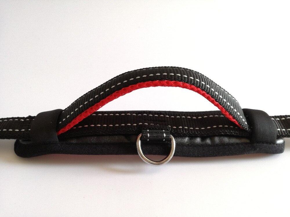 Dog Collar and Leash Set (9)