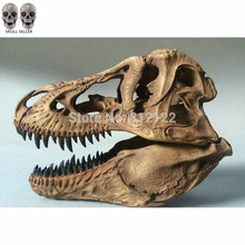 P-Flame Newest Tyrannosaurus Rex dinosaur Resin Fossil skull Model Collectibles 16.7*11.7*12.3cm light color