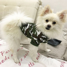 Camouflage Clothing For Small Dogs