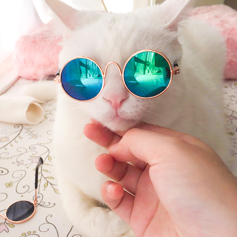 Eyewear Accessories  Fashion Cat Sunglasses Eye Glass Pet Supplies