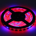 DC 12V Led Grow Lamp 5050 Grow LED Flexible Strip Tape Light 5:1 5 Red 1 Blue Aquarium Greenhouse Hydroponic Plant Growing Lamp