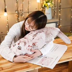 Image 5 - Simulazione Funny Dog & Cat Cuscino Morbido Peluche Animale Del Fumetto Pug & Persiano Gatto di Peluche Bambola Cuscino Pisolino Cuscino Del Bambino regalo di Compleanno del capretto