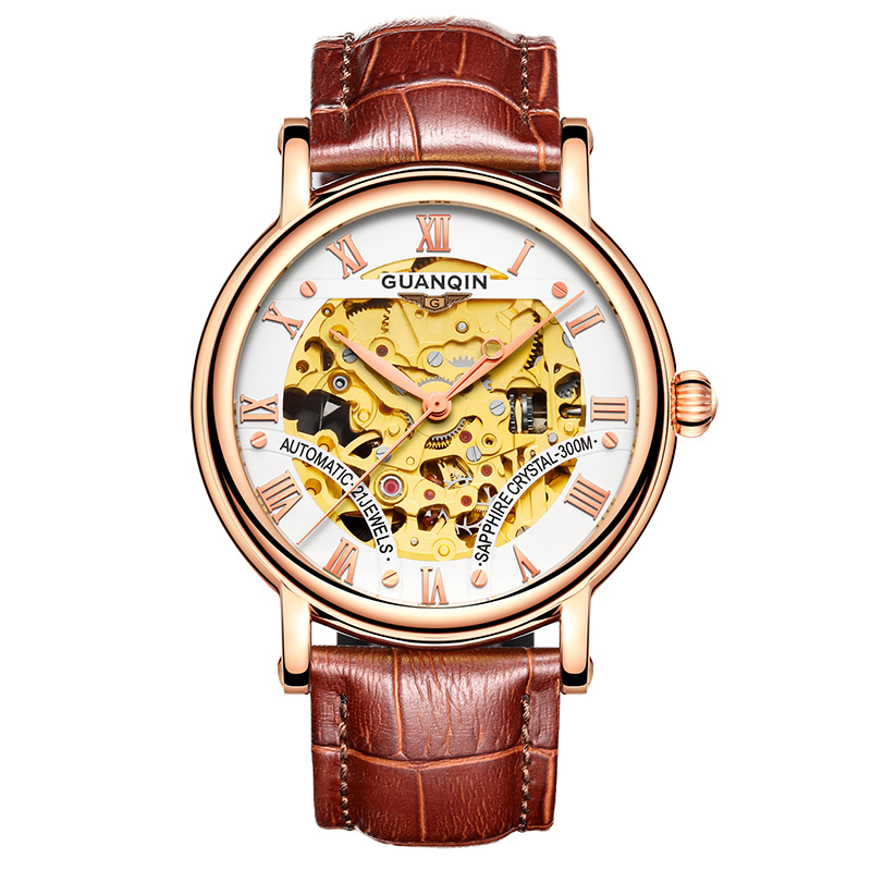 Skeleton watch GUANQIN Men's Creative dial Watches Top brand luxury automatic watch Men Leather band Sapphire Mechanical watches holuns original luxury automatic mechanical watch golden big dial sapphire mirror hollow watch men casual retro leather watches