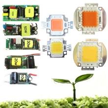 10W 20w 30w 50w 100w 45mil White Full Spectrum 380~780nm Full Spectrum 400-840nm LED Light Diodes + AC Driver For Plant Grow