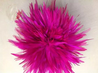 EMS Free Shipping 0.5KG Fuschia Hackle Feather Trim 15 20cm 6 8 Rooster feather Trimming Cock Fringe For Costume Wholsale