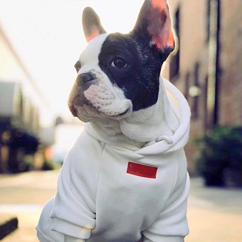 Cotton Spring Dog Clothes For Small Dogs Classic Hoodies For French Bulldog Chihuahua Puppy Costume With Drawstring BR0014