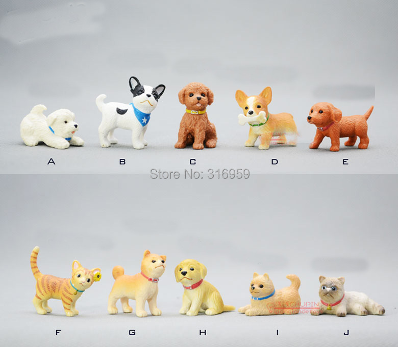 companion brand cat toys