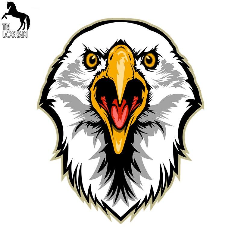 Compra bald eagle coloring y disfruta del envío gratuito en ...