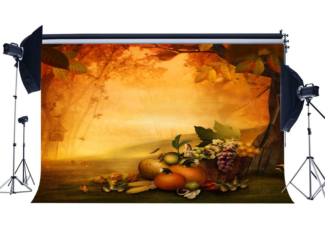 Autumn Harvest Backdrop Jungle Forest Backdrops Pumpkin Fruits Meadow Halloween Photography Background-in Photo Studio Accessories from Consumer Electronics
