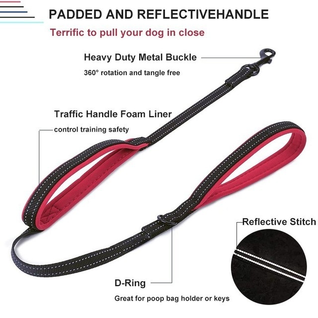 Padded Leash with Traffic Handle