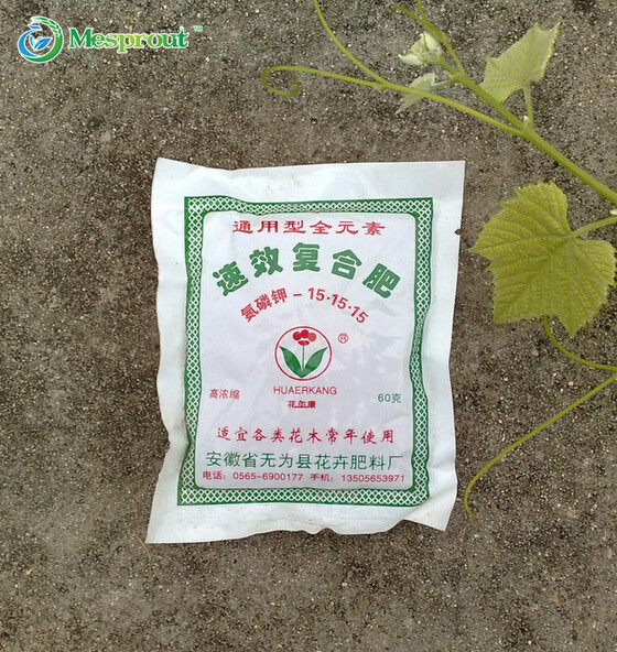Dedicated Available Compound Fertilizer is Suitable for all kinds of flowers and trees to use - About 400 particles/60G
