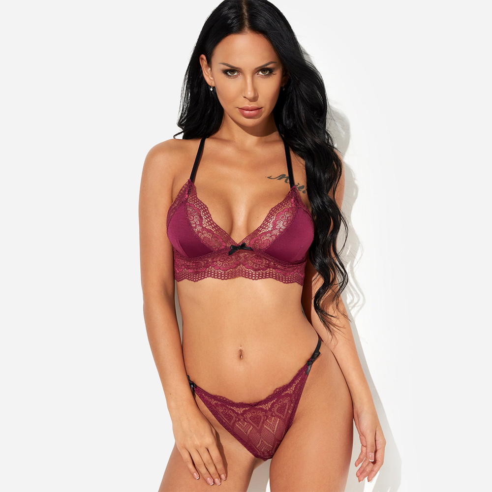 Eyelash Lace Bra and Panty Set Transparent Push Up Brassiere Cut Out Harness Lin