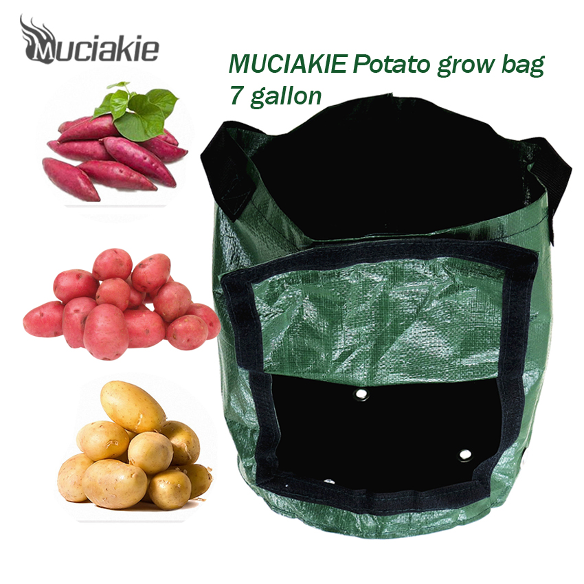 Us 5 91 26 Off Muciakie 1 Piece 7 Gallon Potato Grow Bags Pe Garden Plant Bag W Access Flap Vegetables Planting For Home In