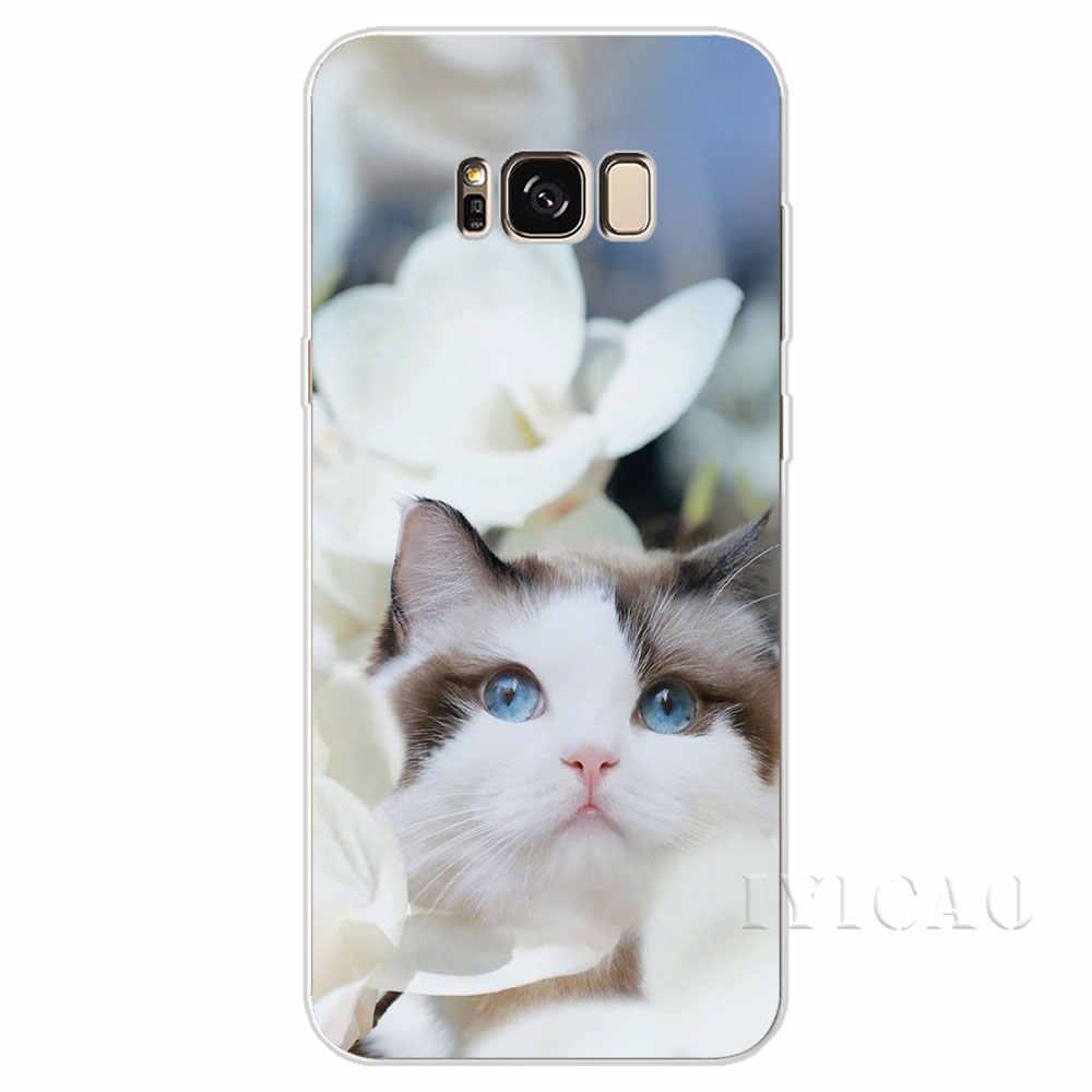 IYICAO маленькое животное Кот Твердый чехол для Samsung Galaxy S6 S7 край S8 S9 S10 плюс S10e Note 8 9 крышка