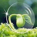 Нет степень анти-излучения объектива ясно линзы-зеленый покрытие прозрачный линзами анти-уф и жесткий линзами
