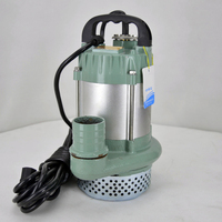 48v 60v DC Brushless Submersible Miniature Water Pump Brushless Dc Swimming Pool Pump
