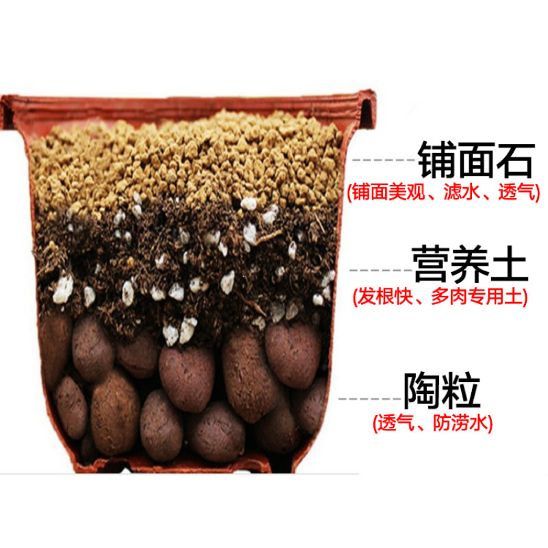 1000g/lot Clay Ball Ceramsite Flowerpot Bottom Root Rot Prevention Hydroponic Nutrient Soil Particles Plant Flowers Garden Tools image